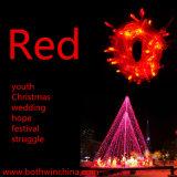 De Lichten van het multifunctionele LEIDENE Koord van Kerstmis