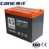 bateria de armazenamento elétrica da bateria da bicicleta 65ah (14-65ah)
