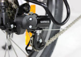 Una bici piegante elettrica da 20 pollici