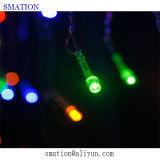 紫色の屋内クリスマス安いLEDの最もよい家のWindowsのネットライト
