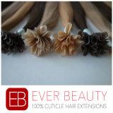 Extensión el 100% peruana Pre-Consolidada del pelo humano de la queratina de la extremidad de U
