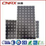 Comitato solare di alta efficienza 310W delle cellule del grado un mono con il Ce di IEC di TUV