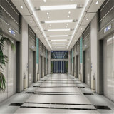 エレベーターのドアのためのステンレス鋼パターンシートをエッチングする装飾的なミラー