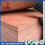 madera contrachapada de caoba del anuncio publicitario de 4m m -25mm Bintangor