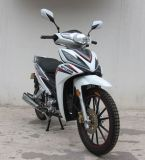 Motocicletas do produto novo, forma, venda quente, alta qualidade