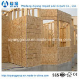 High Quanlity OSB1 / OSB2 / OSB3 pour Fuiniture / Construction / Emballage