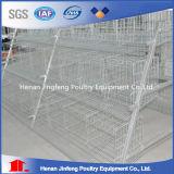 Equipamento de exploração agrícola do fornecedor da fábrica para a gaiola da camada da galinha