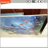 Peinture numérique de haute qualité 3-19mm / sérigraphie / gravure acide / givré / motif plat / bient trempé / verre trempé Forpartition mur / plancher / avec SGCC / Ce & CCC & ISO