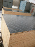 Contre-plaqué Shuttering des meilleurs prix pour la construction