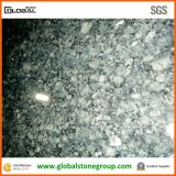 Горячее Selling Butterfly Green Granite Tiles для Hotel Wall Cladding