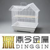 Doppeltes angestrichene züchtend Rahmen für Vogel