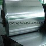 Striscia inossidabile laminata a freddo dell'acciaio inossidabile Steel/304 per materiale da costruzione