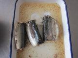 Eingemachter heißer Verkauf der Makrele-425g/eingemachte Fische/in Büchsen konservierte Nahrung