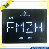 Fabrik-Hersteller LCD-Bildschirmanzeige kundenspezifisches Vatn Htn Stn FSTN 7 Segment