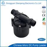 Mini pompe solaire à haute pression de chauffe-eau de C.C de 12V 24V