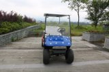 Carrello facente un giro turistico elettrico di 4 Seater