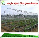 Duurzame Behandelde Film het Planten van Serre