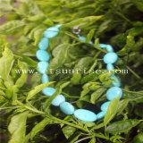 Collar de proceso optimizado natural de la turquesa con los granos ovales verdes