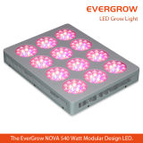 Bridgelux 3Wの最も新しいGreenhouse Grow LED Lights 500W