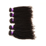 Meilleure vente Remy Virgin Brazilian Hair Extension Kinky Curly Hair