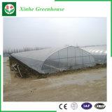 Multi Überspannungs-Plastikgewächshäuser für das Pflanzen