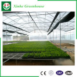 Estufa plástica do jardim da Multi-Extensão da agricultura para vegetais/flores