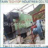 Grille à chaînes horizontale 1ton par chaudière à vapeur pour l'industrie textile
