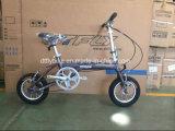 Einzelne Geschwindigkeit, faltendes Fahrrad, faltbares Fahrrad,