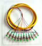 Divisor de fibra óptica del PLC 1*16