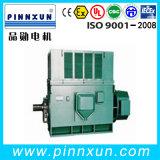 IP23 Rutschring-Hochspannungselektromotor-Fahrwerk-Motor