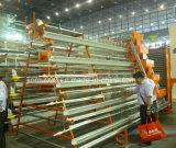 De Kooi van de Laag van het Frame van de Kip van de Machines van het Gevogelte van het landbouwbedrijf