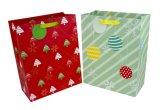 Мешок подарка бумаги мешка подарка бумаги рождества мешка подарка праздника бумажный с подгонянной конструкцией
