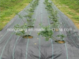 Tela do controle dos PP Weed da agricultura