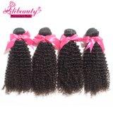 Het Menselijke Haar die van de Groothandelsprijs Kroezig Krullend Maagdelijk Peruviaans Haar weven