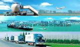 De één Dienst van de Logistiek van het Einde (het overzeese verschepen/de luchtvracht/drukt/douane/ruilend uit)