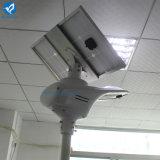 Sistema solar directo del alumbrado público de la fábrica LED de Bluesmart con poder más elevado