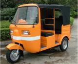 Nuevo triciclo de la motocicleta de 3 ruedas con la azotea para el pasajero