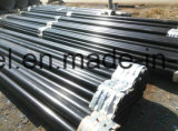 3lpe Fbe Coated API 5L Gr. B Seamless Steel Pipe