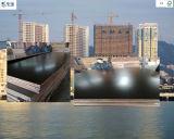 le film de pente de joint de doigt de 18mm a fait face au contre-plaqué pour le marché de Dubaï