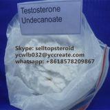 品質の純粋なテストステロンのUndecanoate Anabolicsのステロイドの粉ソース
