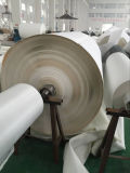 Fábrica profesional de banda transportadora Cmax-Sel de la PU de la banda transportadora del PVC