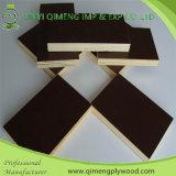 Suministrar la madera contrachapada marina de la prensa caliente de dos veces de Linyi