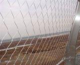 カスタマイズされた建築Xは適用範囲が広いステンレス鋼ケーブルの金網をがちである