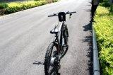 李イオン電池の電気バイク、En15194/Eバイク