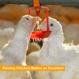 Élevage des buveurs automatiques gauches de raccord de volaille pour le poulet
