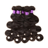 熱いSale 7A GradeブラジルのVirgin Hair Body Wave Hair、Cheap 100のブラジル人Human Hair Weaves MinkブラジルのHair Extension