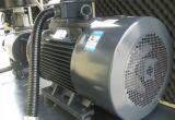 Compressor giratório injetado petróleo do parafuso (TW100A)