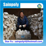 Proteção do fornecedor de China que cobre a estufa solar para o cogumelo