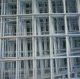 Metalldraht-Filetarbeit, geschweißter Maschendraht im niedrigen Preis