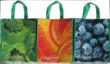 Barato y bolso de compras no tejido de la alta calidad con la impresión en offset